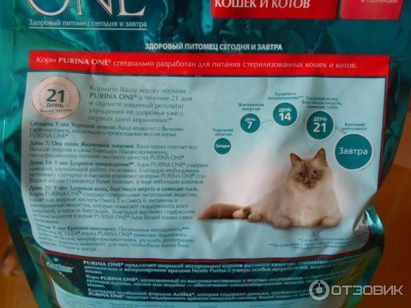 Корм purina one для кошек: сухой, влажный, отзывы ветеринаров