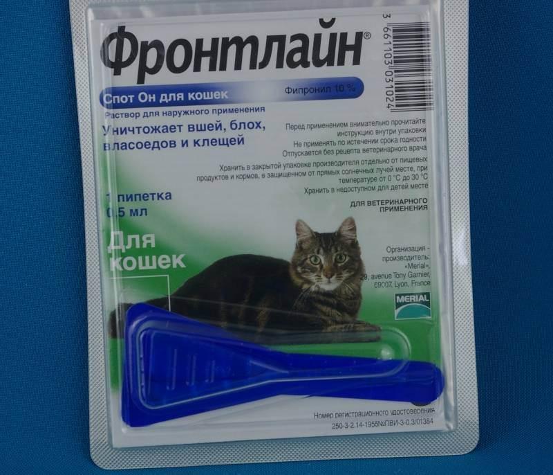 Аверсектиновая мазь для кота