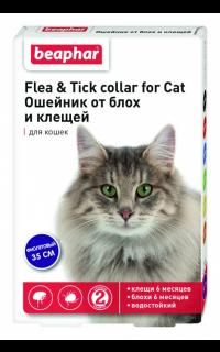 Как избавиться от клещей и блох у кошки? как избавиться от глистов? глисты у кошки, блохи и клещи у кошки