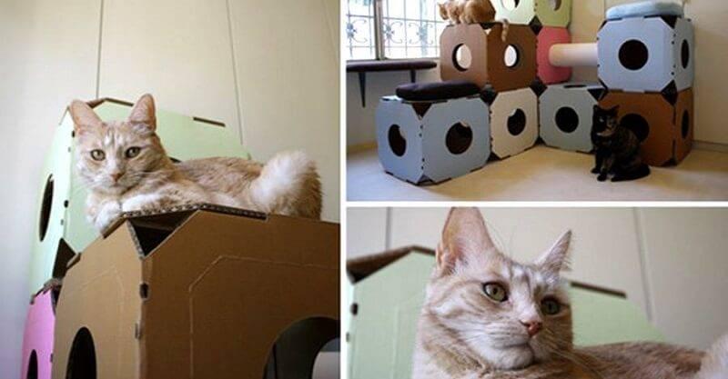 Как сделать поделку кошку своими руками - подборка интересных мастер-классов и фото идеяй
