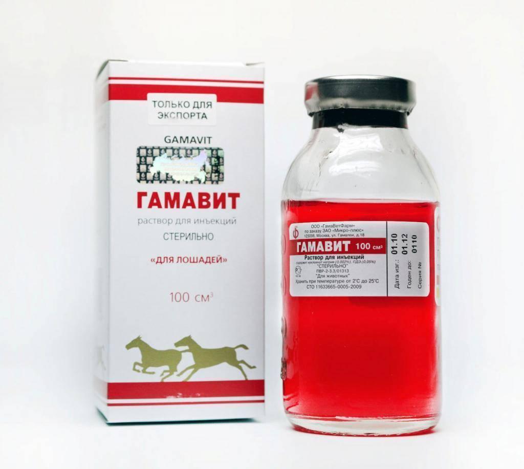 Приведены сведения о препарате гамавит, особенности его применения, собраны выдержки из инструкции, указаны дозы его кошкам, показания и противопоказания использования гамавита котам