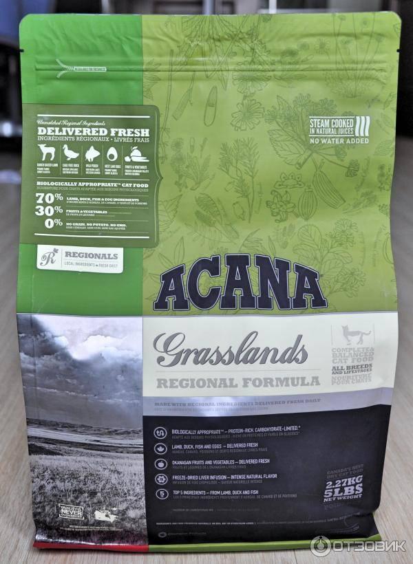 Обзор сухого корма для кошек acana — новая формула