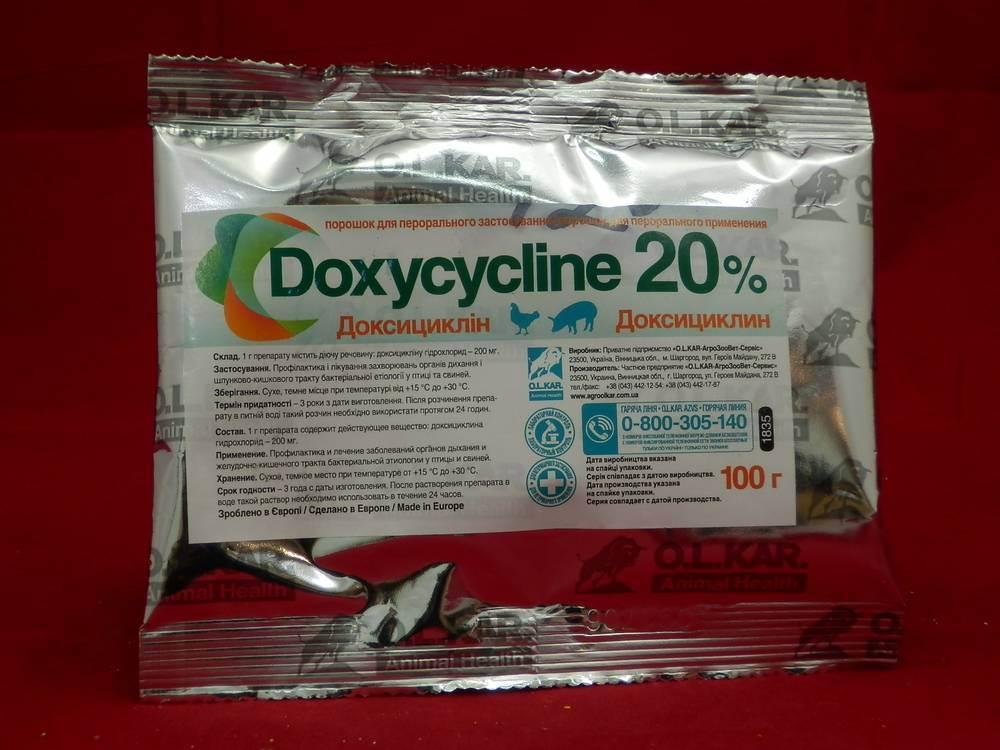 Доксициклин для собак. узнайте инструкцию по применению, дозировку и побочные эффекты доксициклина у собак