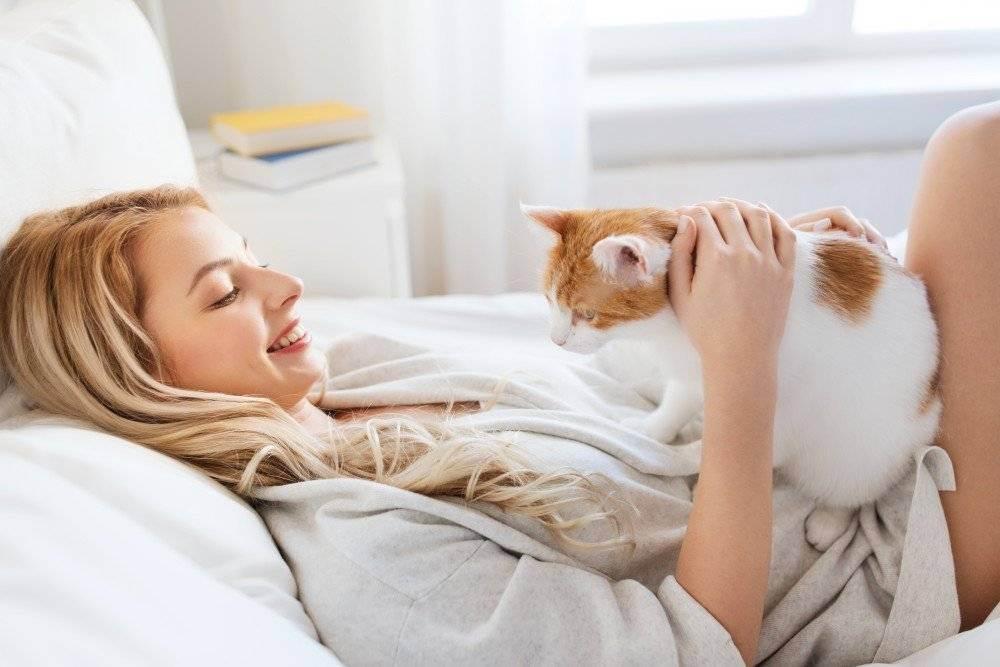 Лечащие кошки - человека, какие болезни, когда сидят на нем, фелинотерапия, правда или миф