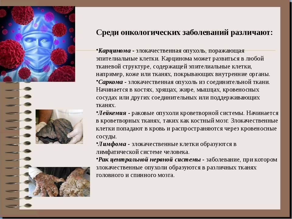 Что такое карцинома у кошек: симптомы недуга и лечение