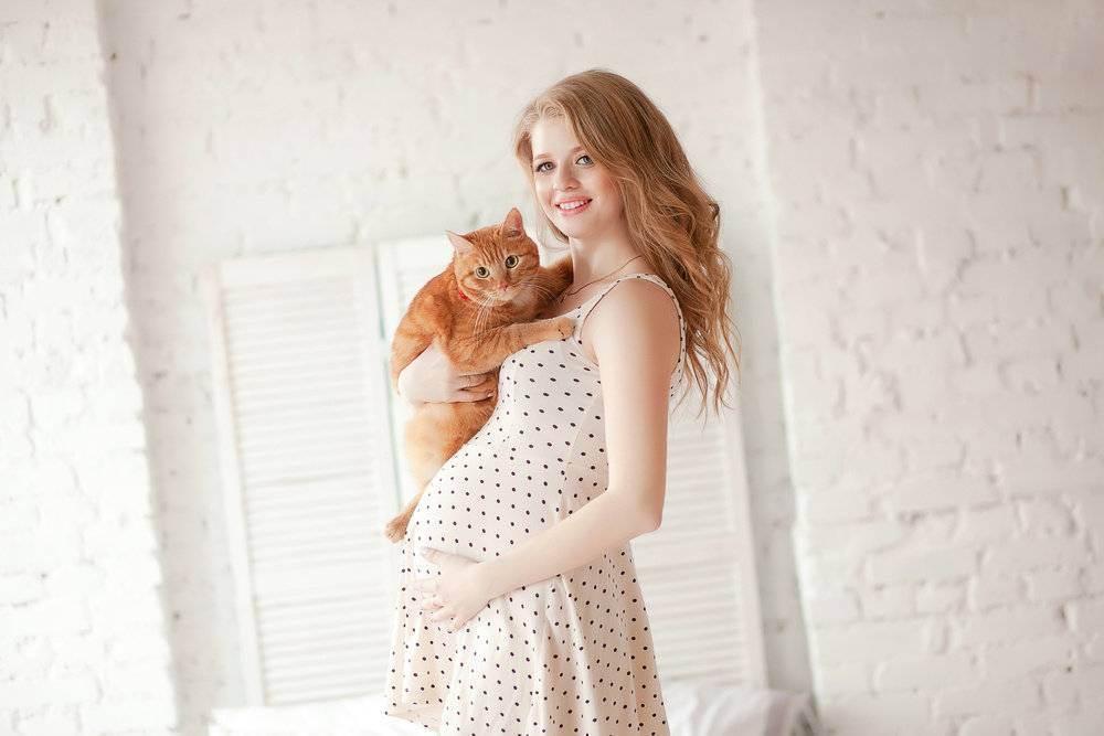 Чем опасны кошки для беременных?
