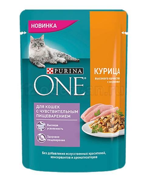 Что дать кошке для пищеварения - wlcat.ru