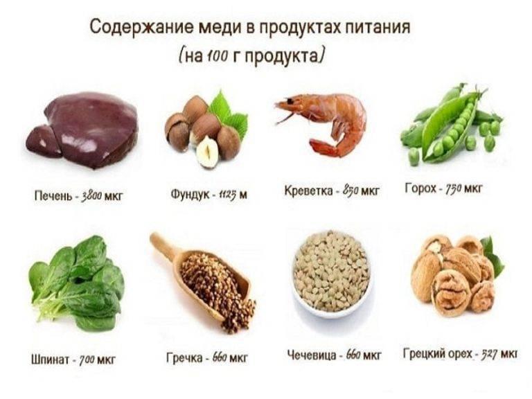 Таурин для кошек вред и польза - oozoo.ru
