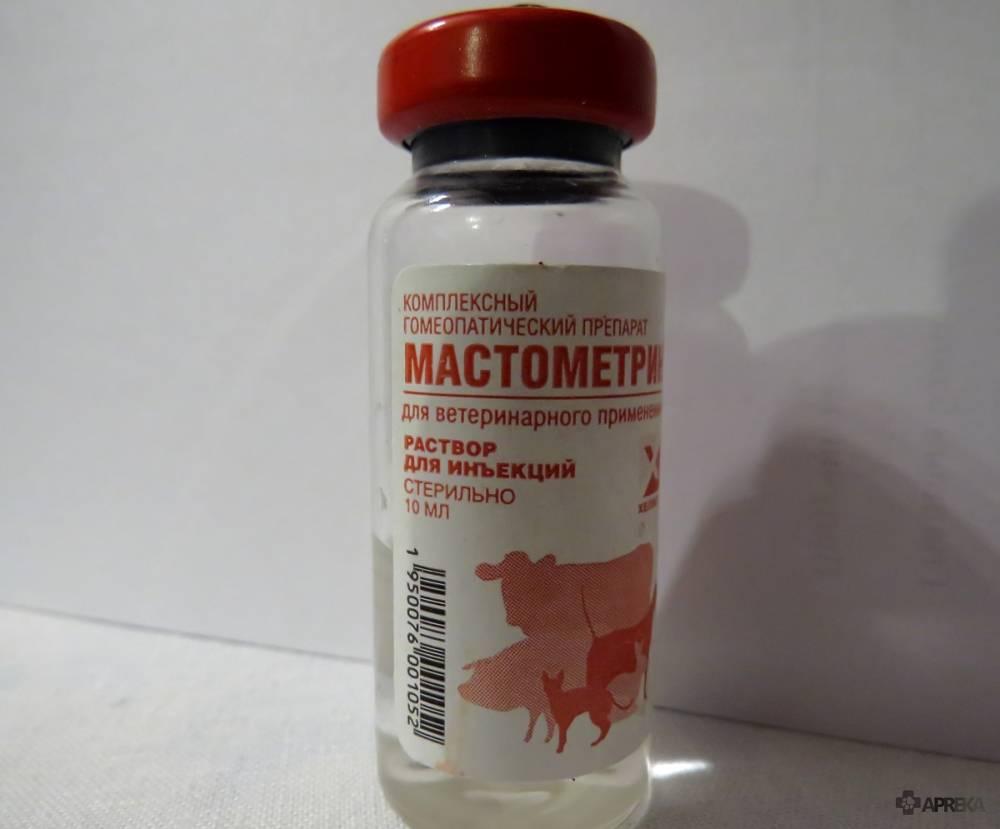 Мастометрин для кошек – лечение и профилактика репродуктивной системы