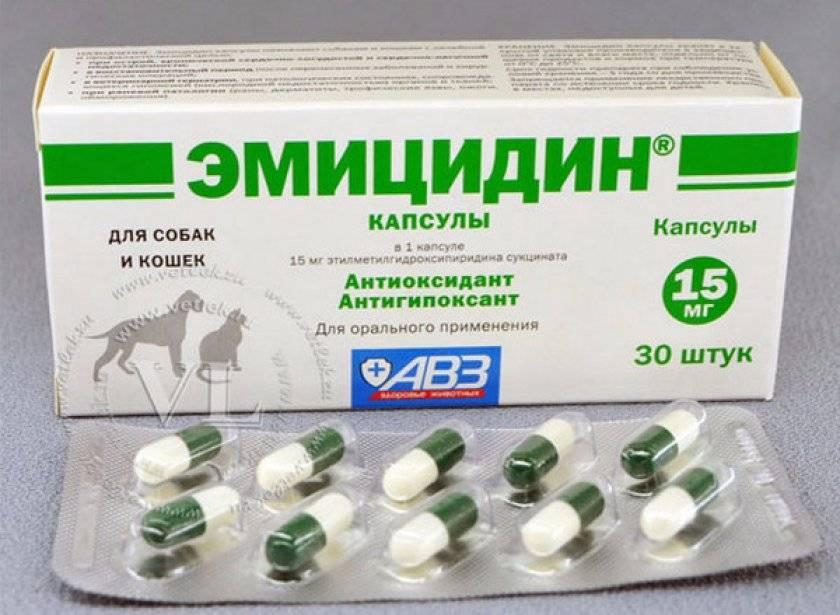 Эмицидин (раствор для инъекций) для собак и кошек   отзывы о применении препаратов для животных от ветеринаров и заводчиков