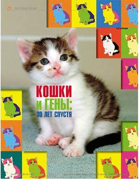 Цвета у кошек названия. основные правила кошачьей генетики