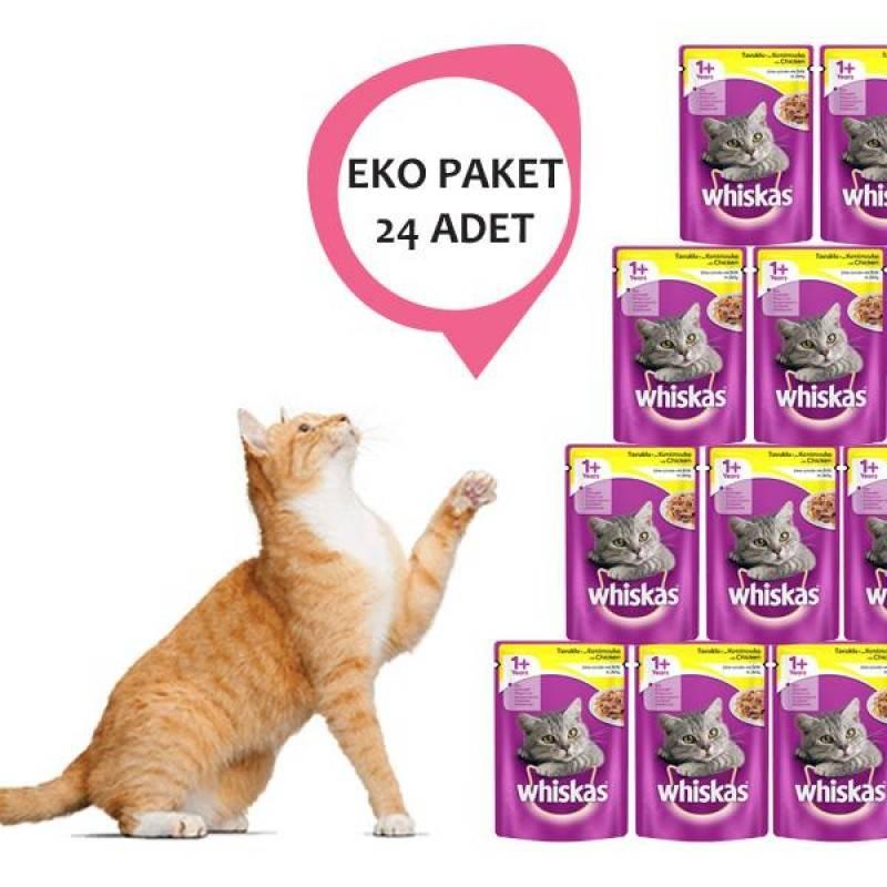 Вискас для котят: сухой и влажный корм для кошек