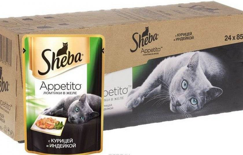 Корм для кошек шеба премиум-класс: отзывы ветеринаров и состав продукта