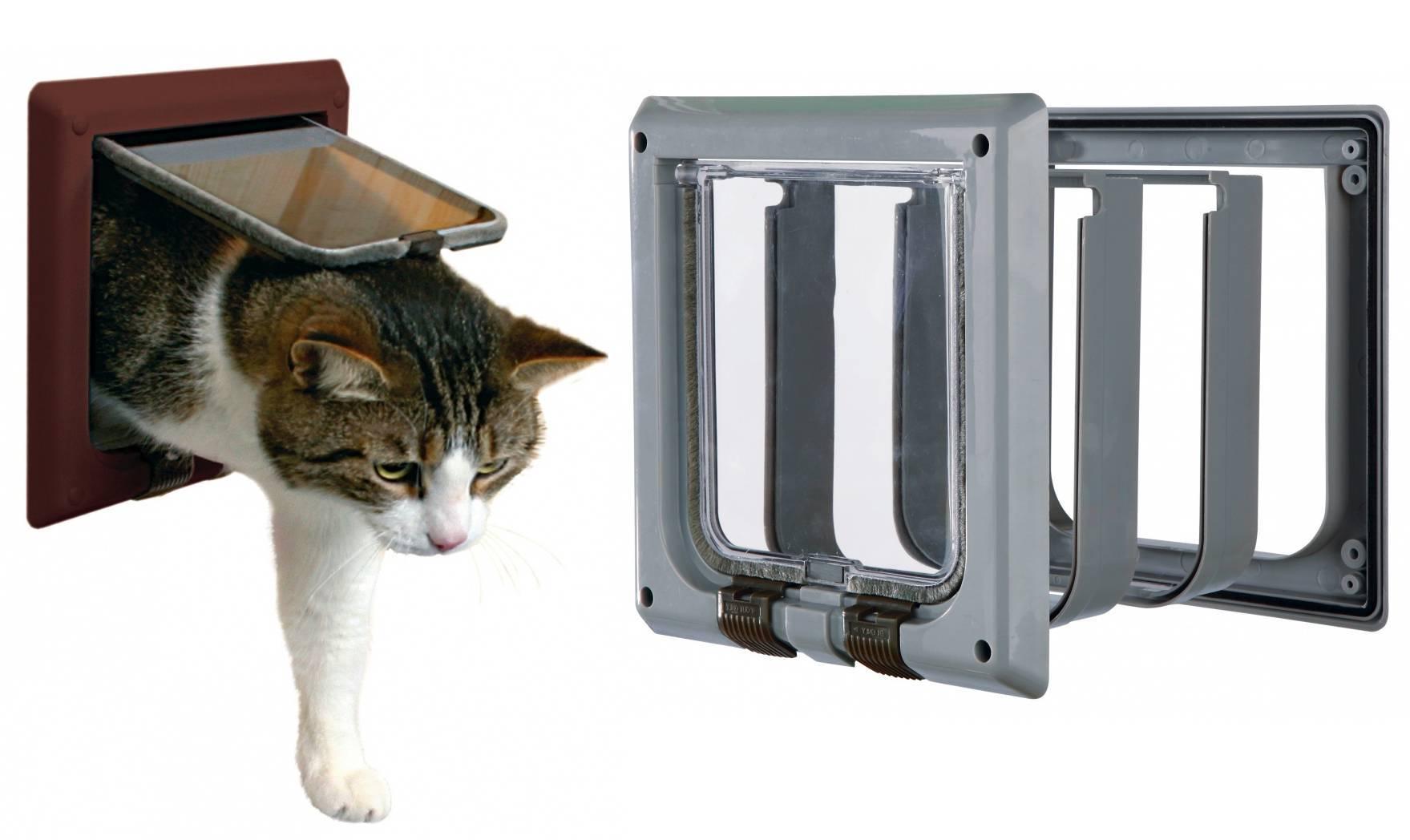 Дверь для кошек своими руками - строительство дома своими руками