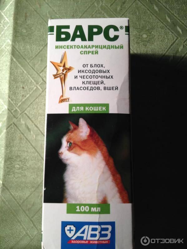 Капли барс для кошек от блох и вшей: инструкция по применению, отзывы