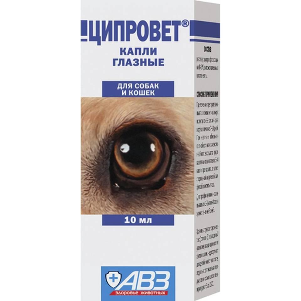 Ципровет таблетки для животных   | инструкция по применению табл. ципровета в ветеринарии