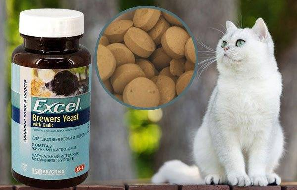 Витамины для кошек от выпадения шерсти, весь список!