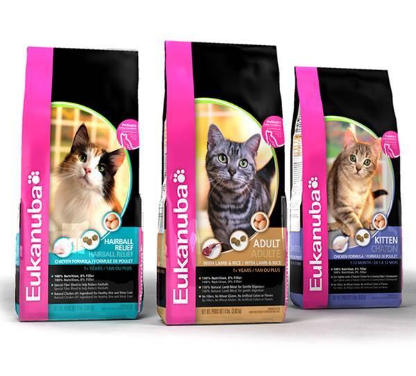 Корм для кошек eukanuba и его основные характеристики: познавайте с нами