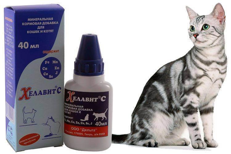 """""""хелавит с"""" для кошек: состав, инструкция по применению, производитель, отзывы ветеринаров"""