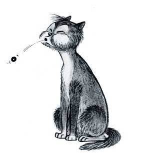 Топ-3 способа, как дать кошке таблетку от глистов