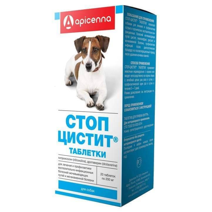 Стоп-цистит для кошек: инструкция, цена таблеток и суспензии