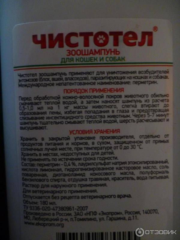Шампунь чистотел для кошек - состав и особенности применения - kotiko.ru