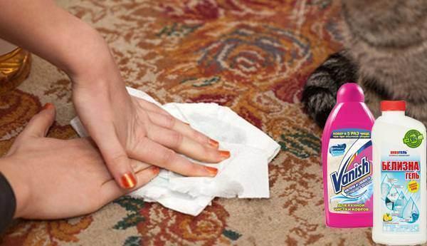 Как навсегда убрать неприятный запах кошачьей мочи с ковра