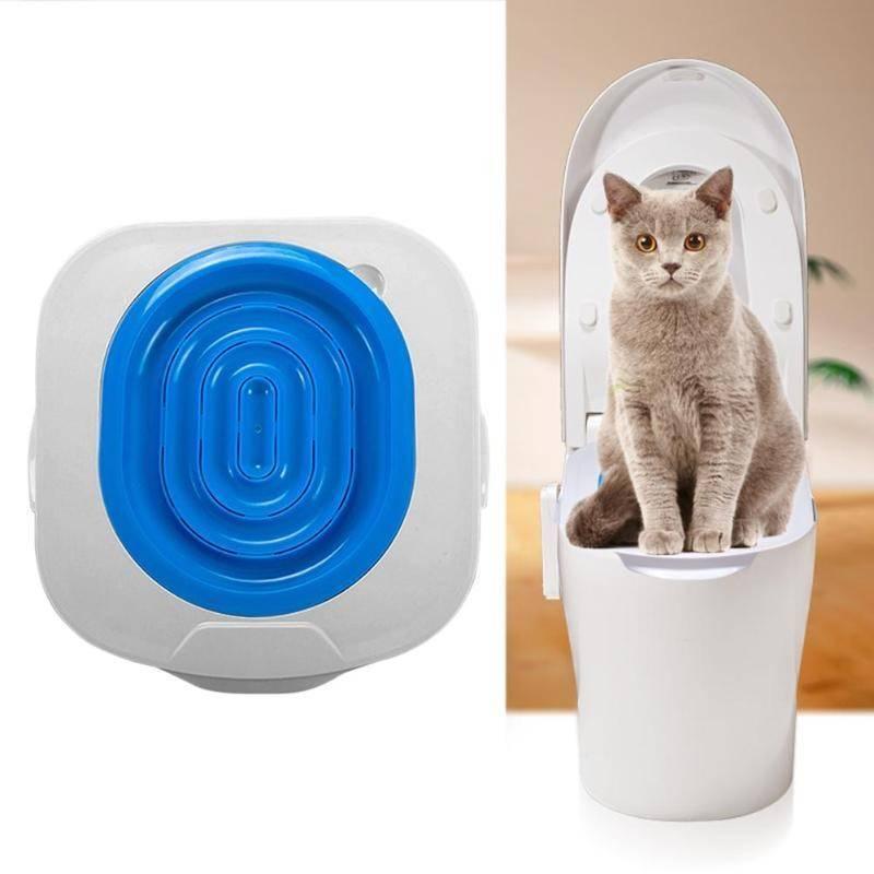 Как приучить кота к унитазу в домашних условиях - система приучения