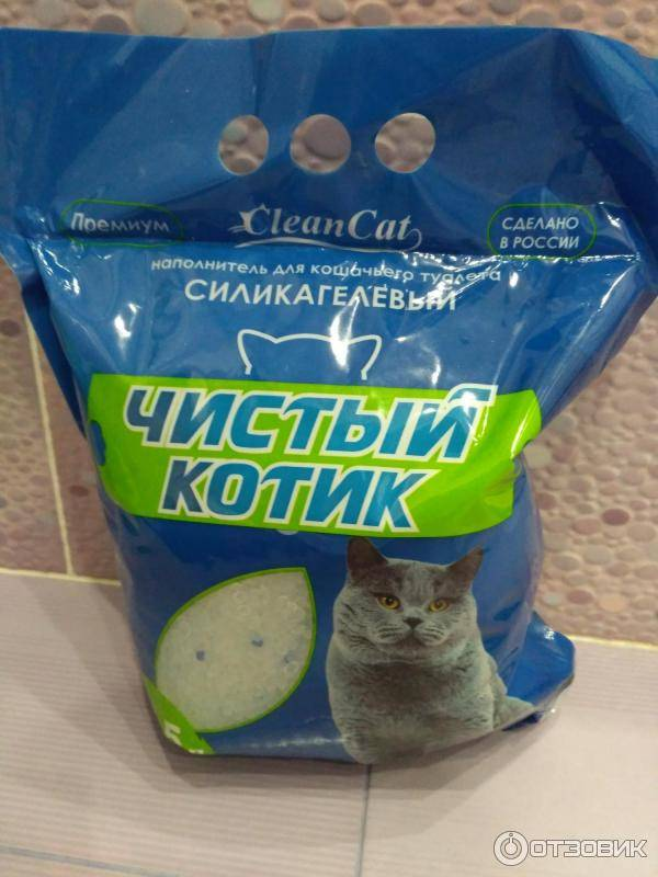 Кошке не нравится наполнитель для туалета