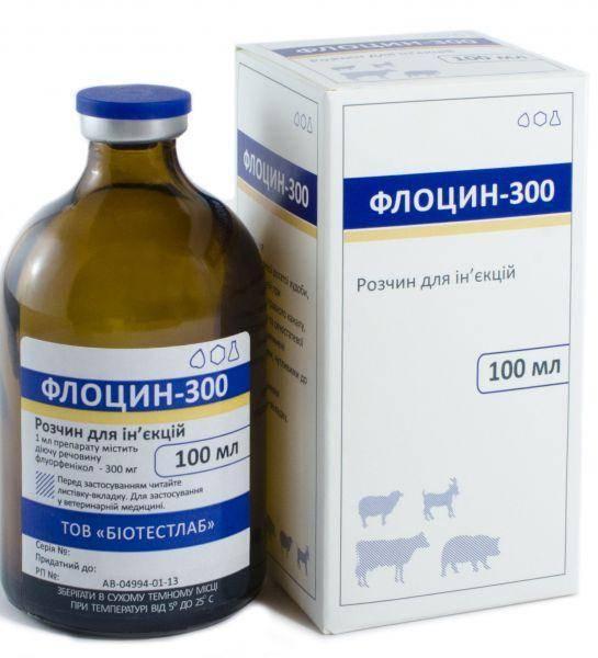Антибиотики для кошек: классификация, показания, побочные реакции и рекомендации