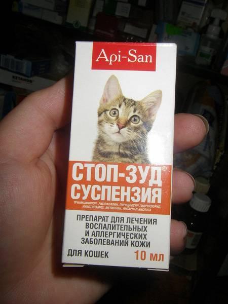 Лекарство от аллергии на кошек