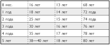 Как определить возраст кошки по человеческим меркам: признаки и таблица
