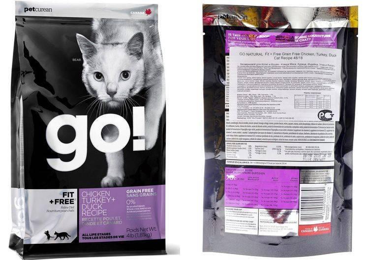 Корм go для кошек: состав, основные виды, польза, вред, особенности выбора и применения (130 фото)