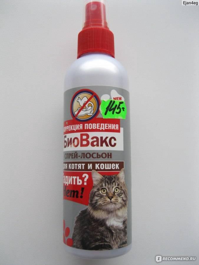 Антигадин для кошек: инструкция и показания к применению, как правильно использовать спрей, отзывы, стоимость и аналоги