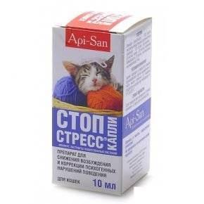 Выбираем эффективное успокоительное для кошек