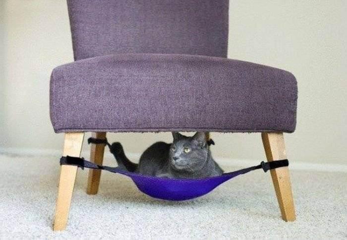 Как построить домик для кошки