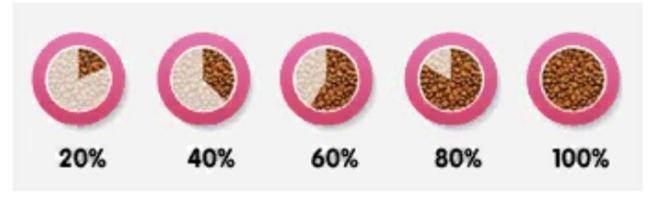 Чем кормить кошку — кормами или натуральной едой?
