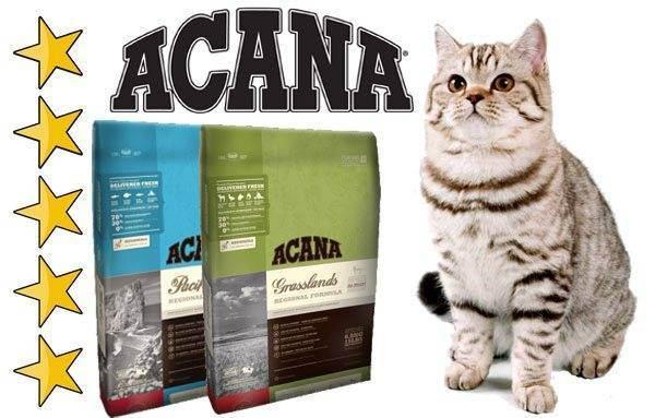 Корма для кошек acana regionals, каталог кормов для кошек acana regionals: состав, отзывы, чем отличается формула корма для кошек акана реджиналс