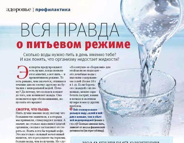 Сколько должна пить воды кошка при цистите