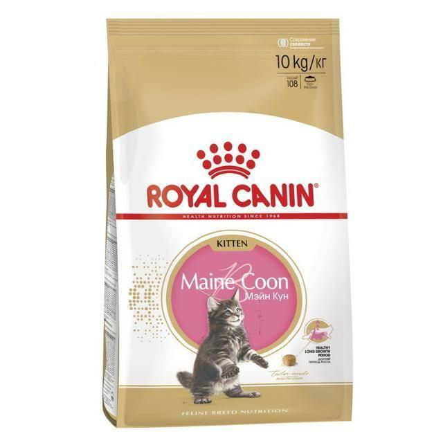 Лучший корм для мейн-кунов: советы ветеринара. чем кормить мейн-кунов?