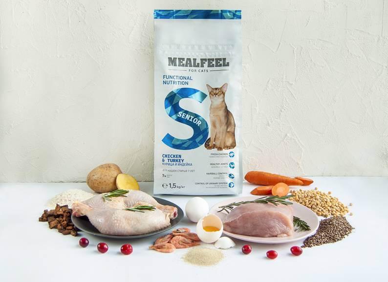 Корм для кошек mealfeel (сухой и прочие виды): плюсы и минусы, отзывы ветеринаров