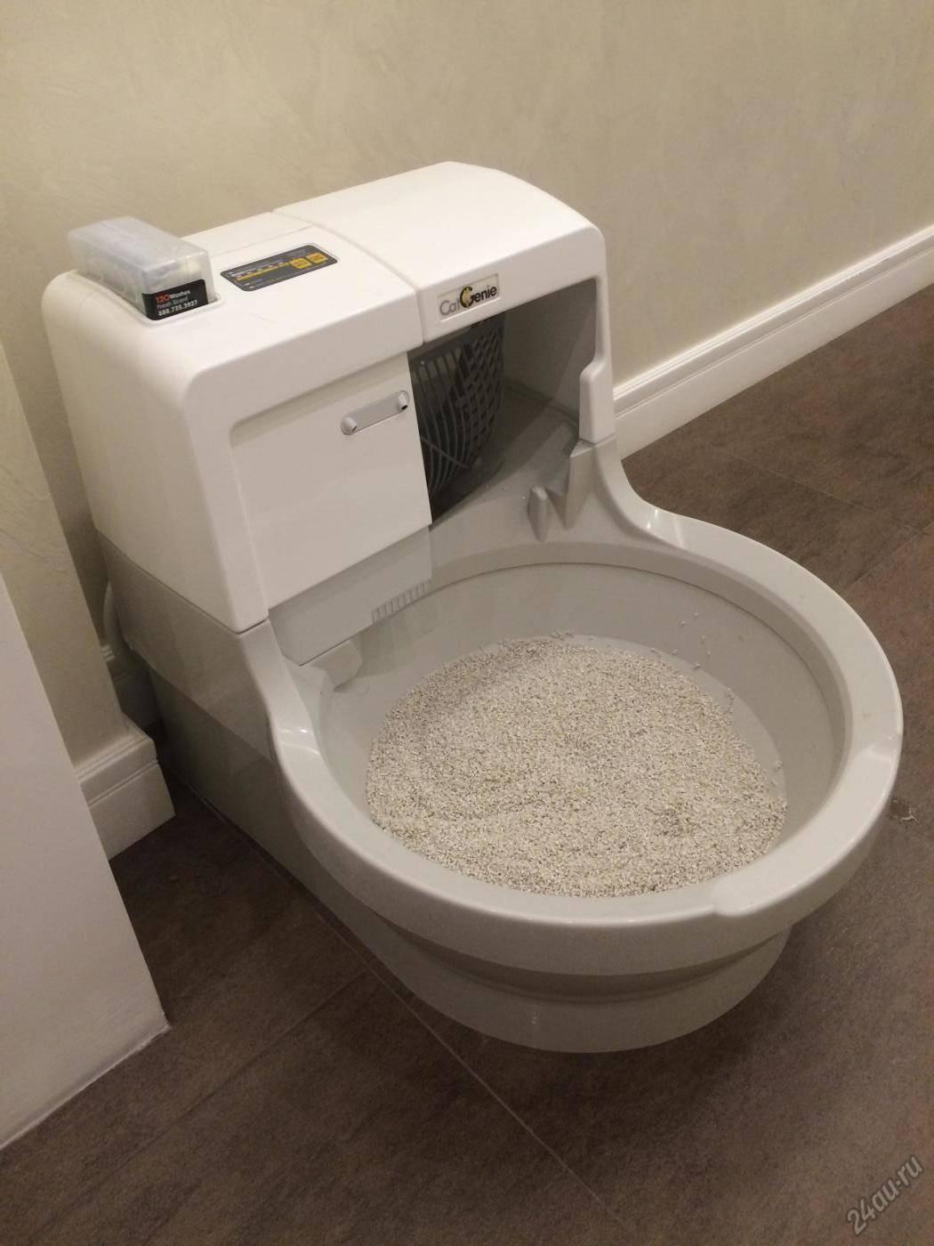 Комфортные условия для домашнего питомца: автоматический кошачий туалет — 4 лапки
