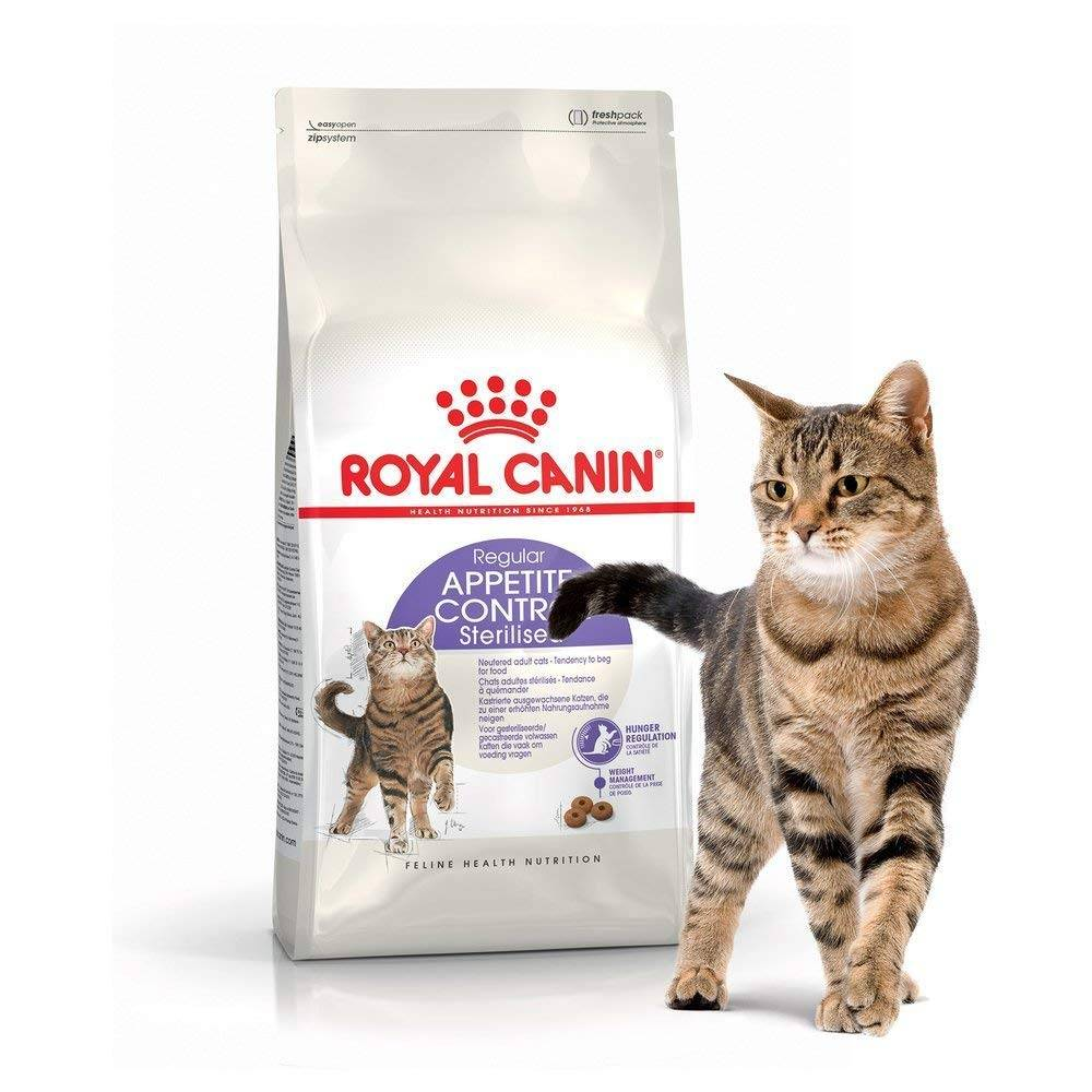 Гипоаллергенные корма для кошек | отзывы, какие лучшие, список