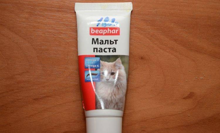 Паста для выведения шерсти у кошек из желудка: отзывы. как давать?