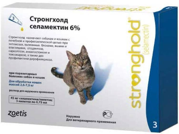 Обзор глистогонных препаратов для кошек: таблетки, уколы, капли и суспензии от глистов