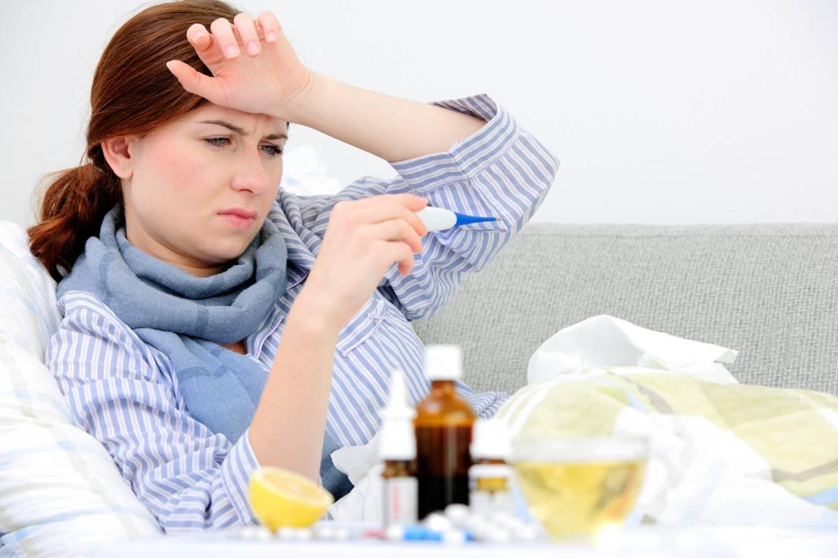 Можно ли заразиться от кошек простудой — простудные заболевания