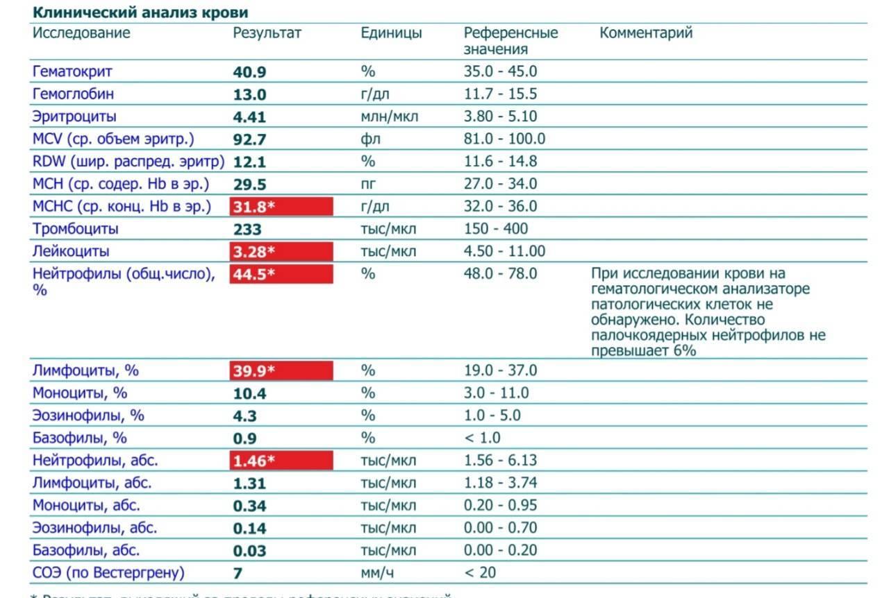Лейкоциты у кота понижены или повышены. характерные симптомы