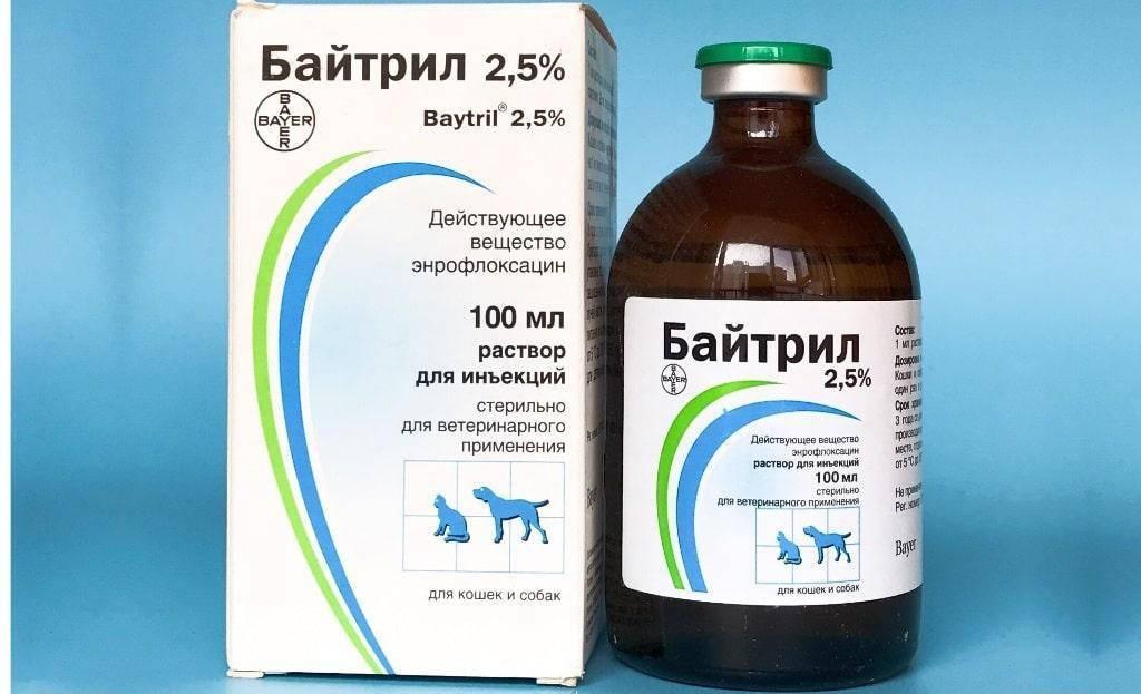 Как применяется «энрофлоксацин» в ветеринарии: инструкция