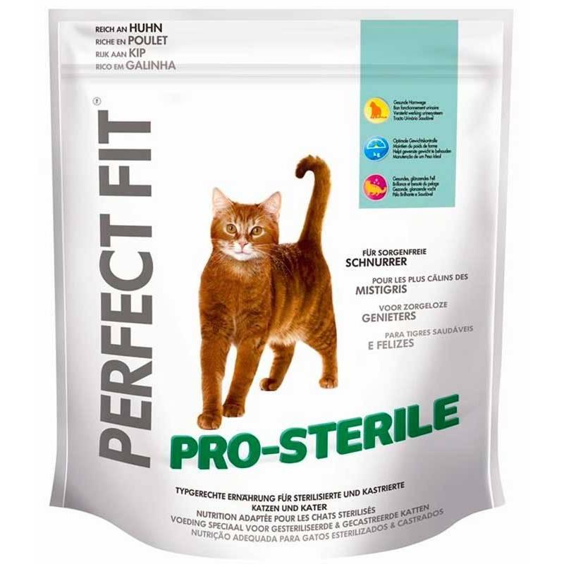 Как и чем лучше кормить кастрированного кота: советы ветеринаров - mimer.ru