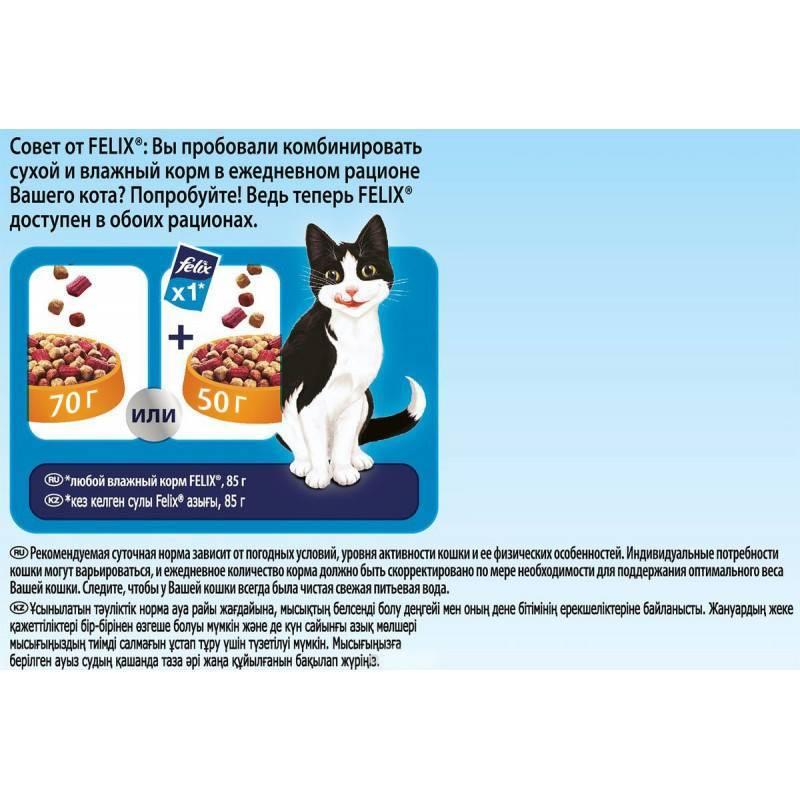 Феликс - корм для кошек: неплохое качество за низкую цену